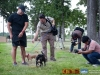 eamd-paws-in-park2-2539