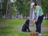eamd-paws-in-park2-2540