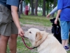 eamd-paws-in-park2-2547