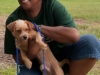 eamd-paws-in-park2-2651