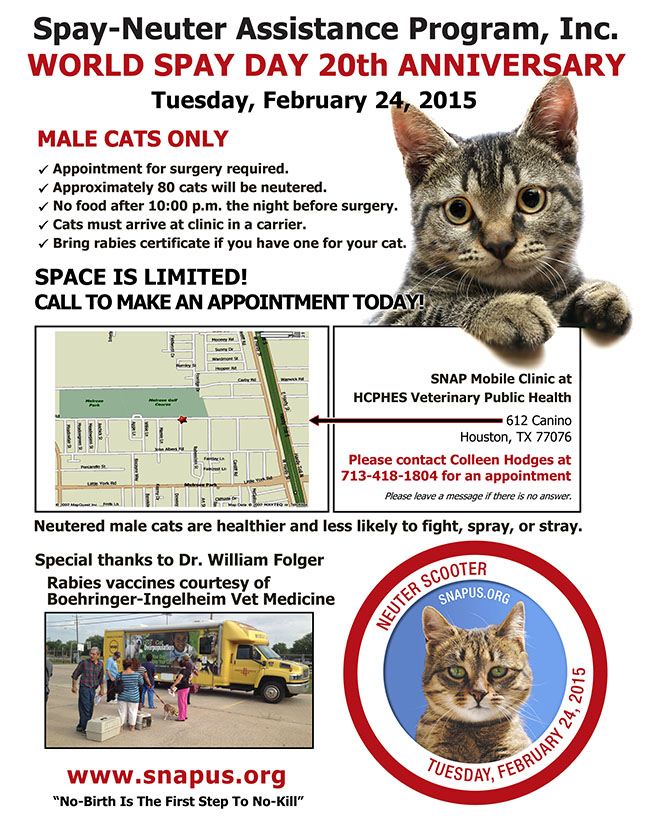 Tuesday, February 25, 2003-MALE CATS ONLY