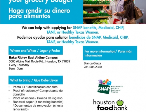 SNAP/Medicaid/CHIP Application Assistance