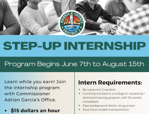 Precinct 2: Step-up Internship